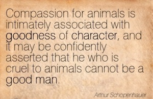 Quotation-Arthur-Schopenhauer-