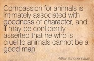 Quotation-Arthur-Schopenhauer-